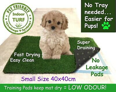 Small EASY LOO Indoor Grass Puppy Dog Toilet Potty Mat + Puppy Training Pads