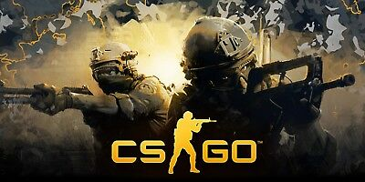 ✅Counter Strike: Global Offensive 100+ hours [Steam account] ⚜️Prime status⚜️