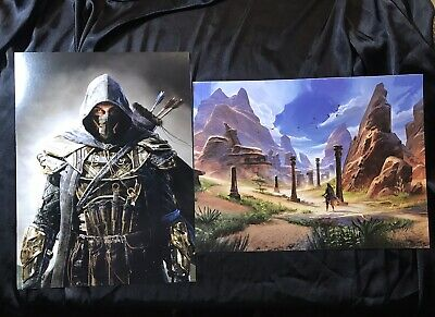 """Two Elder Scrolls Online Posters 16"""" x 12"""" Collectible Posters, Skyrim, Oblivion"""