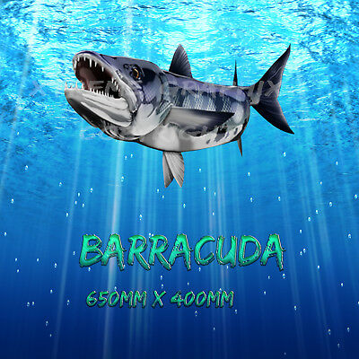 Barracuda Decal Left&right 650Mm X 370Mm  Boat / Car / Truck