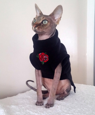elegant ROSE for a Sphynx cat - Sphynx cat clothes, Katzenbekleidung, HOTSPHYNX