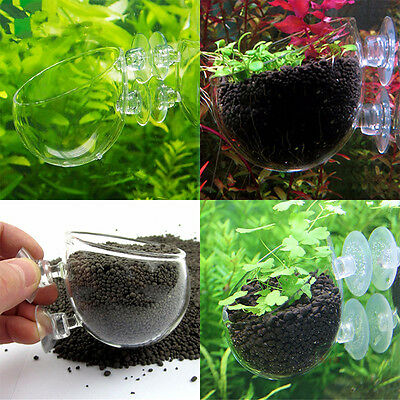 Aquarium Fish Tank Clear Holder Aquatic Plant Glass Cup Pot Container Decor