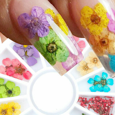 Real Dry Dried Flower Leaves 3D UV Gel Tips Nail Art Wheel Decoration