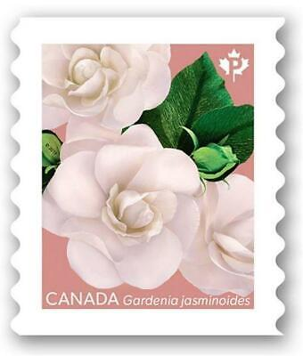 2019 Canada ~ Gardenia Stamp (Pink Back) ~ From Booklet MNH ~FREE SHIPPING