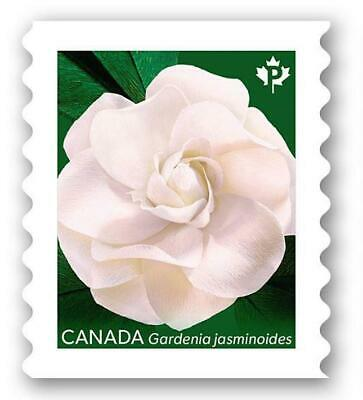 2019 Canada ~ Gardenia Stamp (Green Back) ~ From Booklet MNH ~FREE SHIPPING