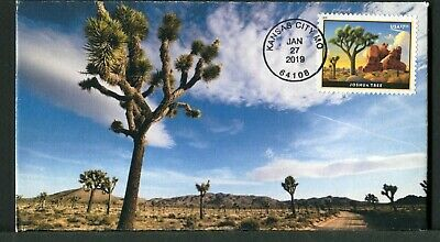 5347 * $7.35 Joshua Tree Priority Mail Stamp Of 2019 >