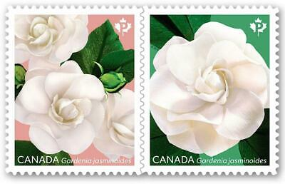 2019 Canada ~ Gardenia Pair Stamps ~ From Booklet MNH ~FREE SHIPPING Can & USA