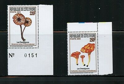 R024  Ivory Coast 2005  mushrooms    2v.  MNH