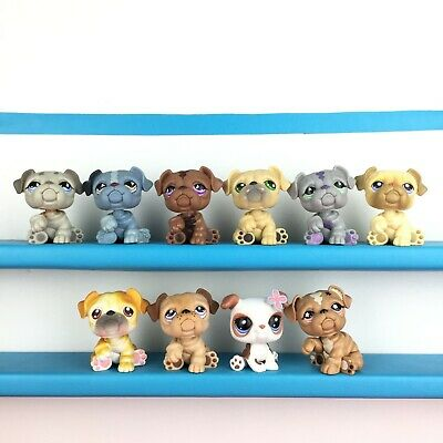 Lot 10 Littlest Pet Shop 508 668 881 107 916 135 46 1342 2106 LPS Bulldog Set