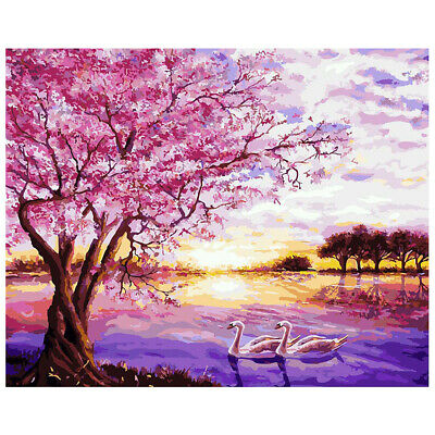 DIY Painting Digital Oil By Number Kit Paint Home Wall Art On Canvas 40*50cm AU