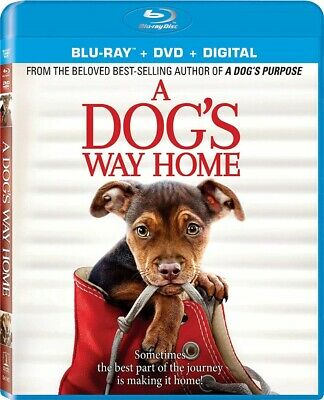 A Dog's Way Home NEW BLU-RAY + DVD + DIGITAL CODE PRE ORDER for 4/09/19!