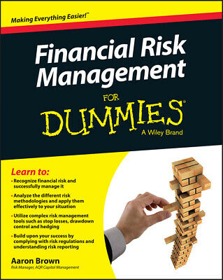 Financial Risk Management🔥For Dummie🔥Not Physical book ⭐PDF⭐2019