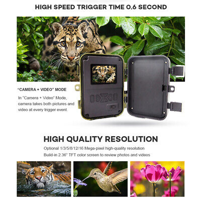 UK 1080P 16MP Animal Hunting Trail Camera Video Scouting Infrared Night Vision