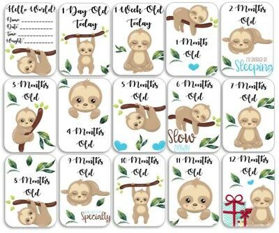 Sloth Themed Baby Age Milestone Cards. Pack of 15. Baby Shower Gift. Mum to Be.