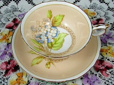 Paragon Blue Hydrangea Over Peach Background Tea Cup And Saucer
