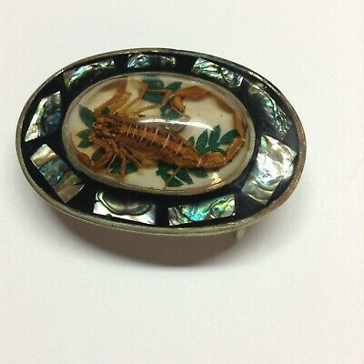 Vintage Alpaca Mexico Belt Buckle Real Scorpion and Abalone Shell