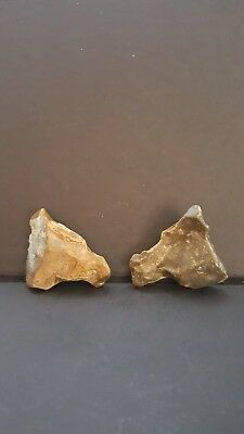Exceptional Upper Paleolithic/mesolithic Portable Rock Art Animal Busts