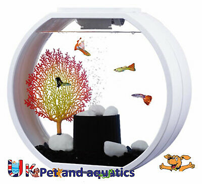 Fish R Fun, Deco Fish Tank 10L White