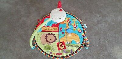 Musical Play Mat For Baby