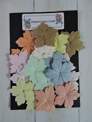 Paper Flowers - Medium Pastels