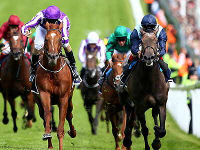 The Lay Factors Horse Racing Betfair Betting System