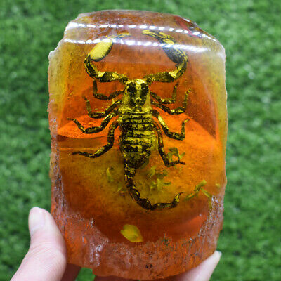 Chinese Collectible Amber Inner Inlay Scorpion True Insect Lucky Statue Decor