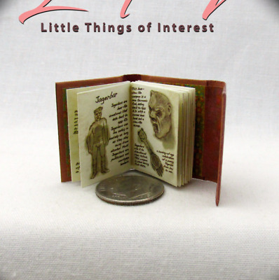 WESEN BOOK OF LORE 1:12 Scale Book Illustrated Dollhouse Miniature Book