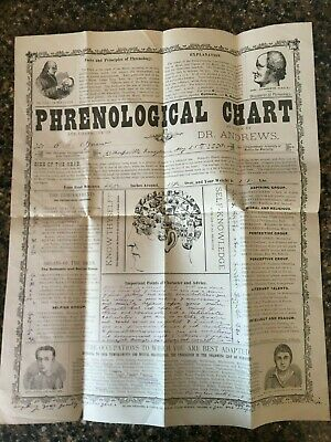 1880 Phrenological Chart by Dr. Andrews C.E. Agnew Blade Printing phrenology