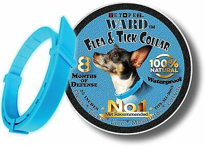 All Natural Vet Pet Flea Collar for Dogs Flea and Tick Control Blue Lasts 8 mos