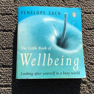 THE LITTLE BOOK OF WELLBEING Mini Lifestyle Suggestion Book (1998) Paperback