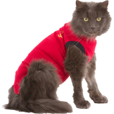 Medical Pet Shirt for Cats, Small. Premium Service, Fast Dispatch