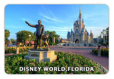 "Florida Disney World  Travel Souvenir Photo Fridge Magnet 3.5""X2.4"""