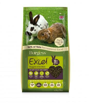 Burgess Excel Tasty Nuggets with Mint Adult Rabbit Food   Small Animals