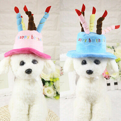 Cat dog pet happy birthday candles hat cosplay costume *dress party headwear cap