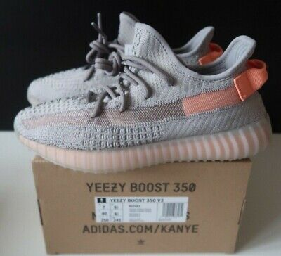 sports shoes d0b3a 33711 Adidas Yeezy Boost 350 V2 True Form Europe Only Release Size UK 6.5 US 7