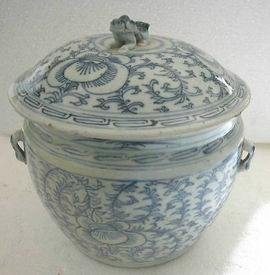 A Fine Antique Chinese Blue&White Hand Painted Big Canton Ginger Jar-Restored  S