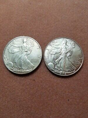 Lot of two (2) American Eagle Silver Dollar Walking Liberty 1 oz Coins #14