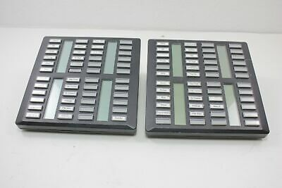 2 Nortel Norstar Meridian NT8B41FA-03 48 Button Expansion Modules