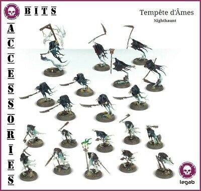 Bits Nighthaunt Tempest Of Souls Tempete D' Ames Warhammer Aos