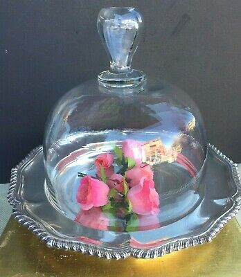 Antique French Glass Cloche Dome With Antique English Plate