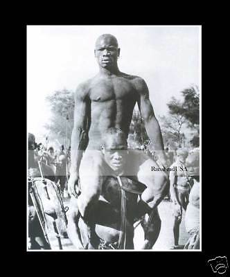 Africa 1949-rpt WRESTLERS George Rodger South Sudan Undressed Males Bare MATTED