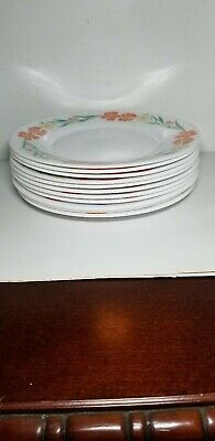 Arcopal Pastoral White w/Peach &Yellow Floral France 10 Salad Plates Very Clean