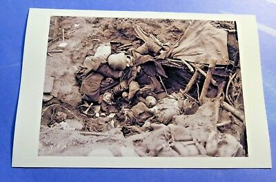 German dead at The Somme 1916 WW1 Vintage 4X6 Photo reprint PH2566