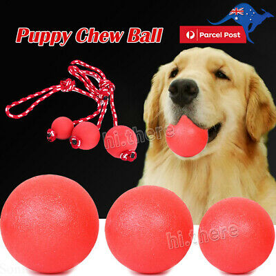 Indestructible Solid Training Toy Rubber Ball Pet Puppy Dog Chew Play Fetch Bite