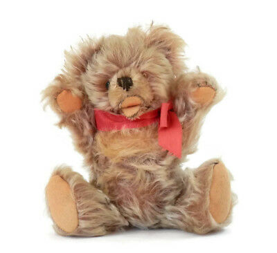 Antique Teddy Bear Zotty Steiff with Open Mouth Caramel Mohair with Felt Pads