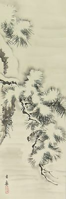 JAPANESE PAINTING HANGING SCROLL JAPAN SPARROW ANTIQUE SNOW PINE PICTURE 695h