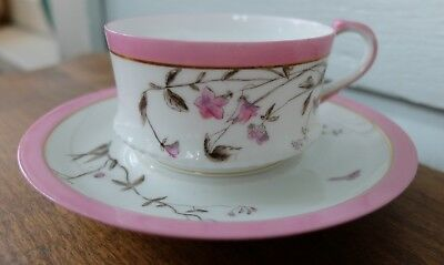 Antique Limoges Tressemanes & Vogt Cup Saucer Botanical Dragon Fly Sepia Pink