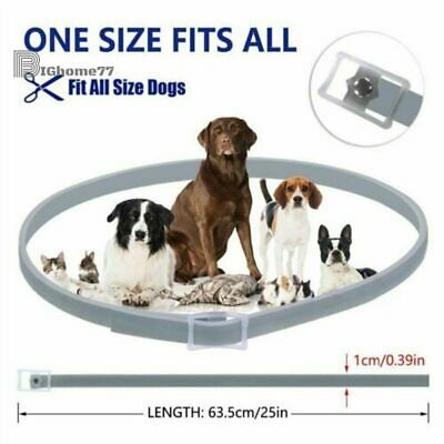 63cm DEWEL DOG soresto Hygiene Flea and Tick Collar With 8 Month Protection
