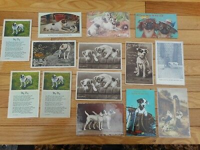 Lot of 14 Vintage Jack Russell Terrier Dog Picture Postcards