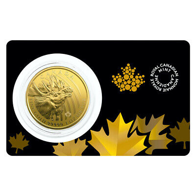 1 oz 2019 Call of the Wild Series | Moose Gold Coin